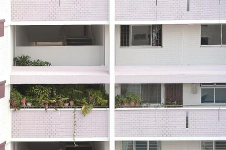 Pasir-Ris flat owner keeps close to 80 plants in common corridor