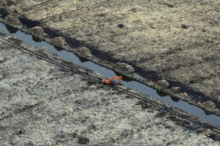 Indonesia moratorium on new forest clearance now permanent