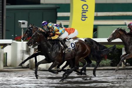 Mega Heart brings relief to trainer4