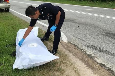 Singaporean biker decapitated in freak accident in Johor Baru