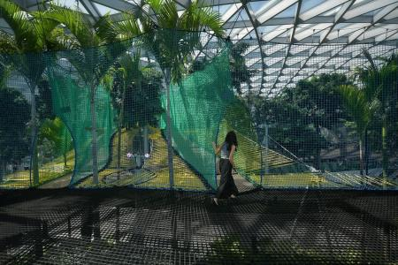 Woman injures her hand after tripping on Canopy Park walking net