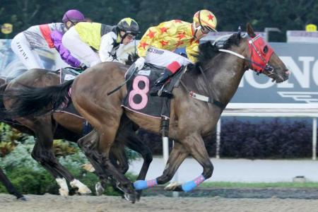 Gallops by horses engaged on Friday