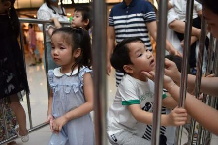 China's child modelling industry booms amid controversy