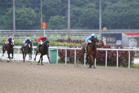 Diamond Ring gives Moloney first Kranji win