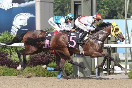 In-form pair strike with another mare