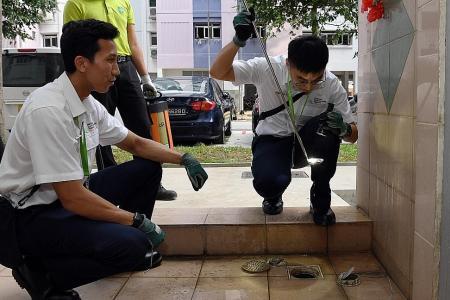 9,135 dengue cases so far this year