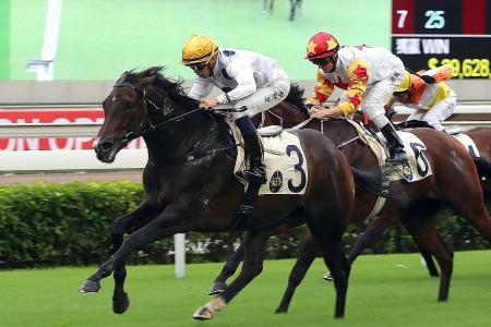 Cruz saddles three winners, two ridden by Aldo Domeyer
