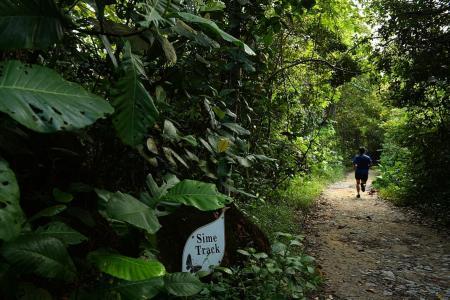 Running Cross Island line under nature reserve feasible