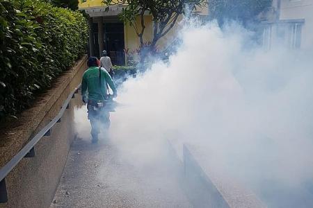 Condo with 33 dengue cases no longer a high-risk area