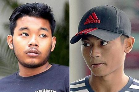 Two youths get probation for recklessly riding e-scooters