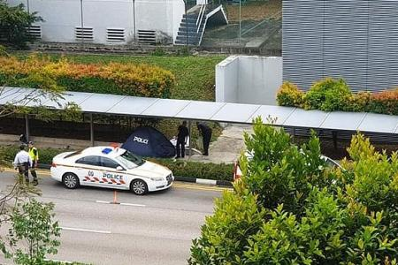 Maid dies in hit-and-run after car hits into walkway, man arrested