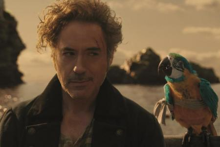 Robert Downey Jr wants kids to have fun with Dolittle
