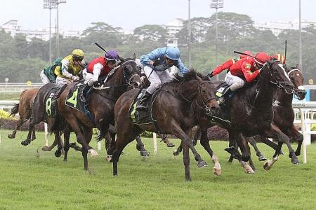 Aramaayo wins RDA Cup by a nose