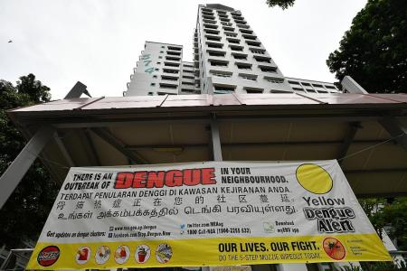 Dengue cases likely to rise further: NEA