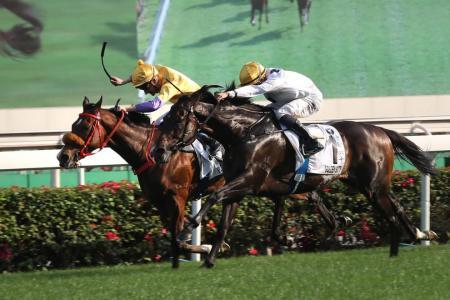 Golden Sixty lands HK Derby