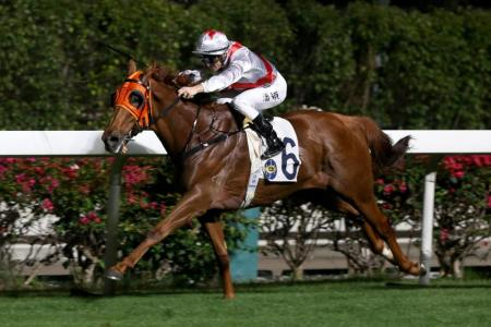 Double puts Purton one ahead of Moreira