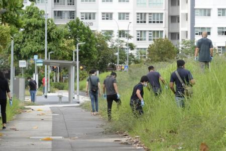 Man, 20, arrested for Punggol Field murder