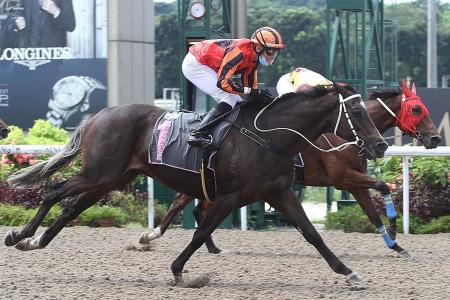 Lim's Shot to 'racing stardom'