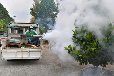 More fogging to fight dengue but experts question effectiveness