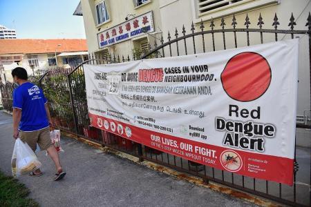 Three more dengue deaths in Singapore as outbreak worsens