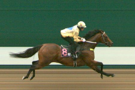 Super Invincible ready to step up