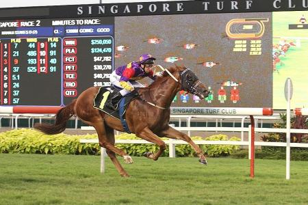 King Zoustar set to rule again