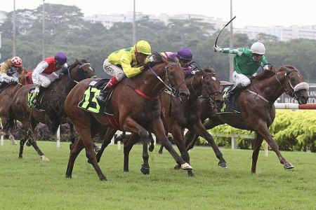 It's the Singapore Guineas now for Mr Malek