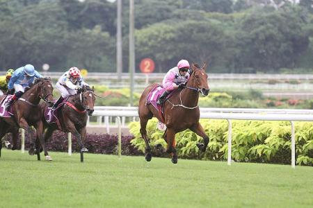 Inferno rages on in Singapore Guineas