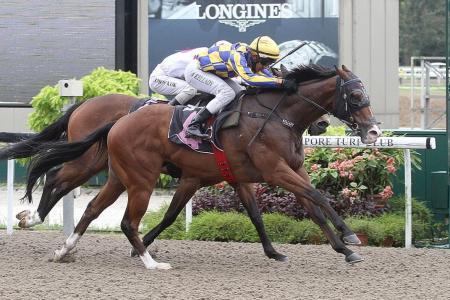 Kellady picks up a win aboard Hugo