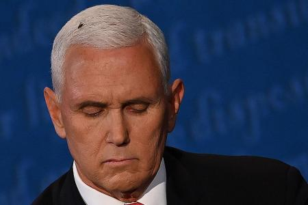 Fly on Pence's head steals the limelight in US V-P debate