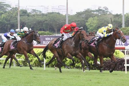 Muraahib likely to skip Lion City Cup