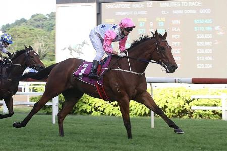 Inferno can prove too hot in Lion City Cup