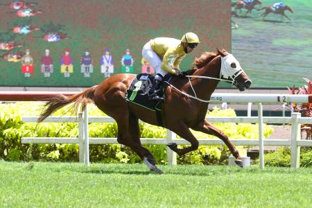 Clements kicks further ahead in trainers' race