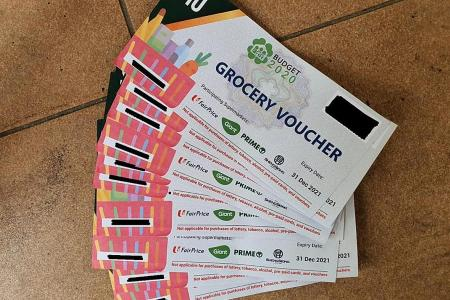 55 people nabbed over alleged theft of grocery vouchers