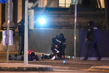 4 killed after terror attack in Vienna, 1 gunman shot dead