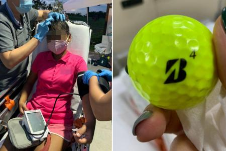 Actor's son, 5, has close shave with golf ball at Jurassic Mile
