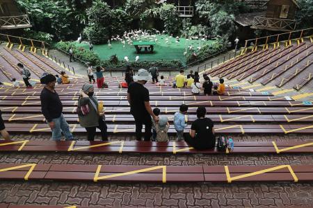 Older folk daunted by online redemption of tourism vouchers