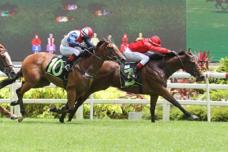 Ablest Ascend in good order on training track