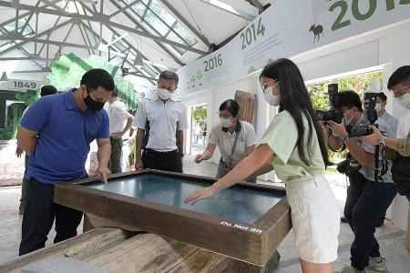2 new parks to link Central Catchment area, Tengah