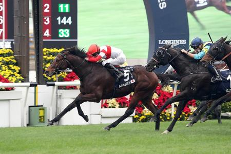 Normcore denies Win Bright Hong Kong Cup double