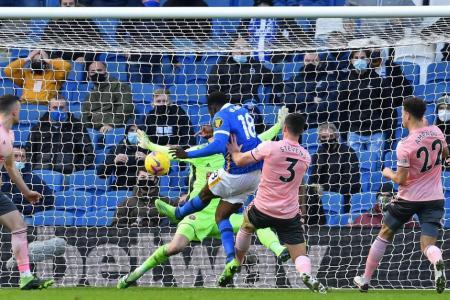 Sheffield United denied first win as Brighton grab late equaliser