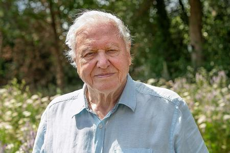 Attenborough on climate fight: Singapore has educated, powerful voice