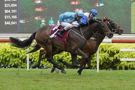 Hail Michael Clements, the new King of Kranji