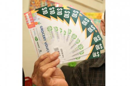 Man jailed for stealing Budget 2020 grocery vouchers from letter boxes