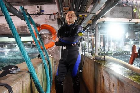 Safety lapses found at Underwater World after diver's death in 2016