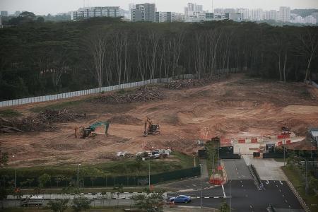 Thorough investigation on Kranji land clearance mistake: Desmond Lee