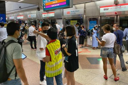 Software issue causes train disruption on North-South Line