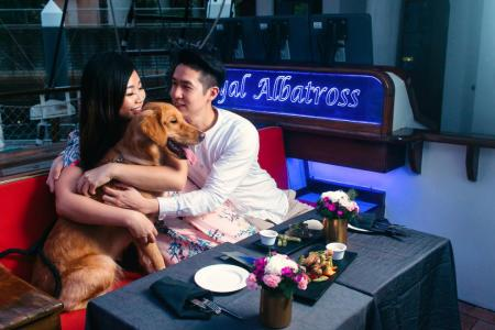Every dog has its day on board world's first dog cruise in Singapore