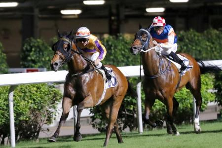 Saul's something Special in Race 4
