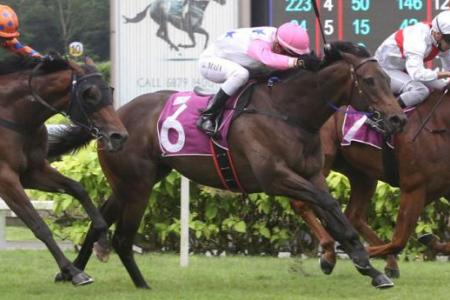 Boomba stands out over Class 4 rivals
